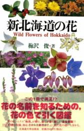 新北海道に花