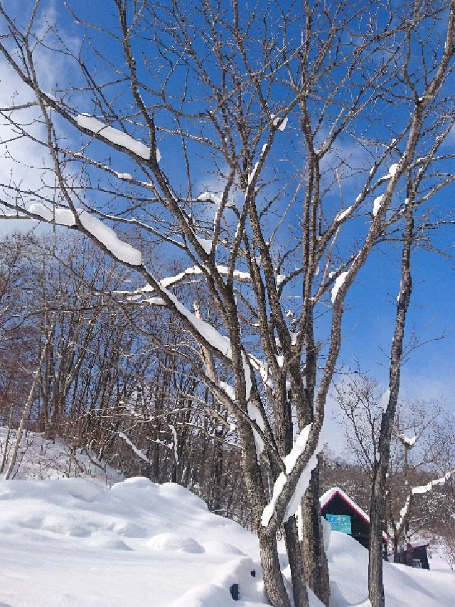冬の定山渓ファーム♪