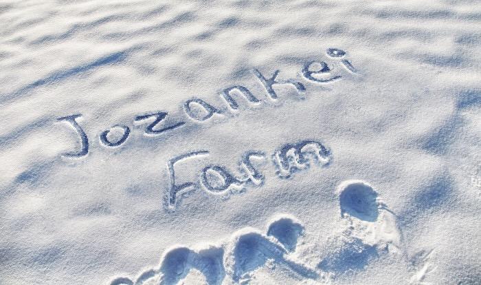 ♪冬の雪広場イベント期間 無料送迎シャトル車のご案内