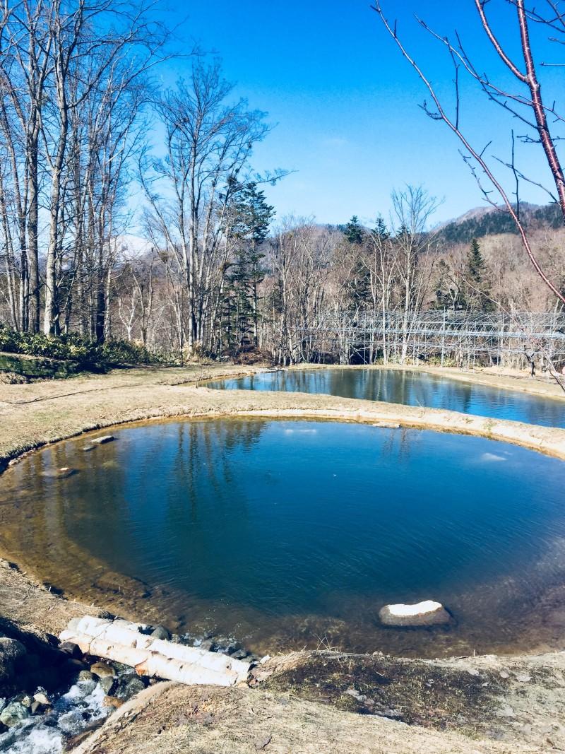 オープン前: 定山渓ファームの自然美