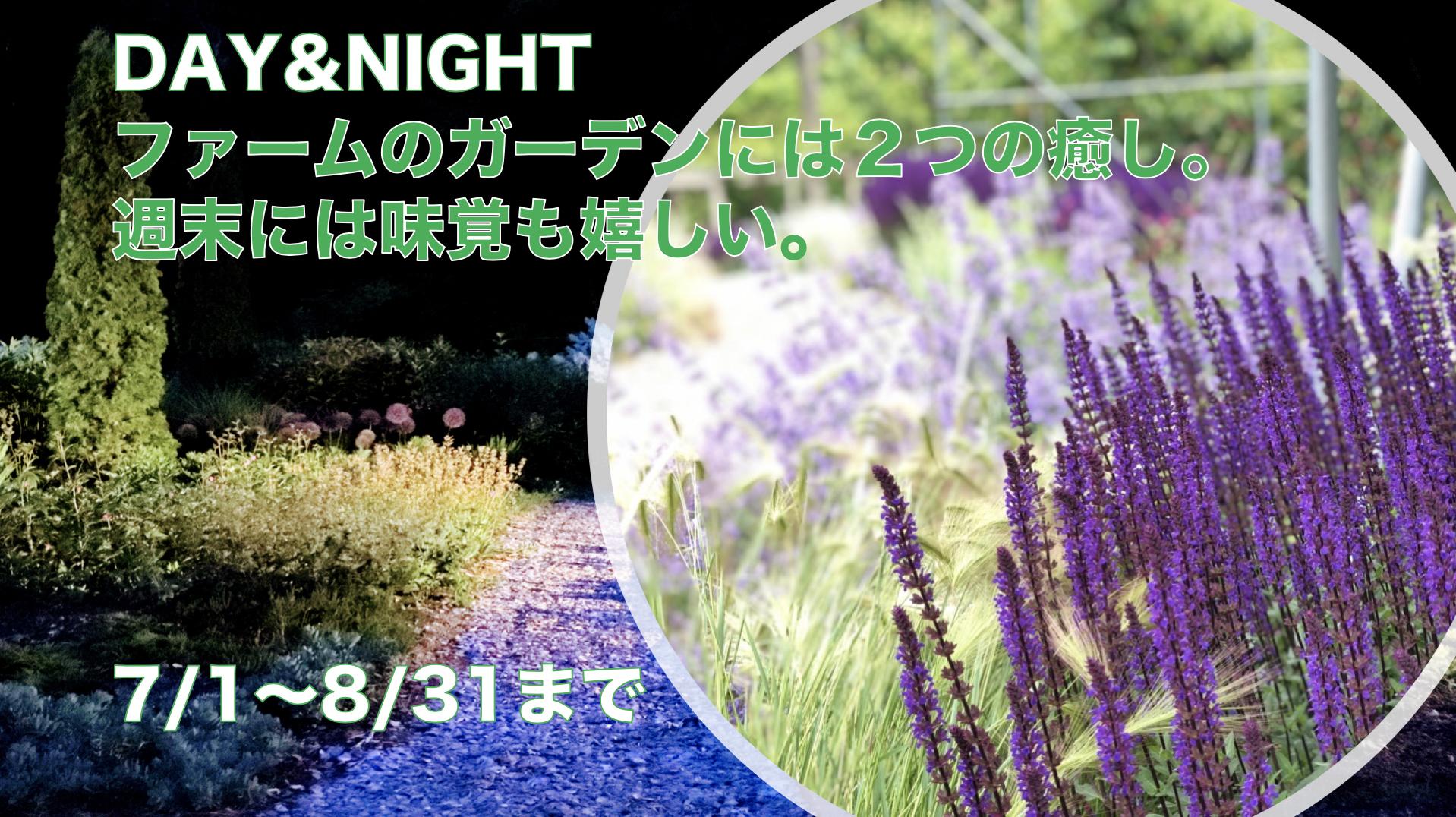 【大人の夜企画】ナイトガーデンと天空のジュエリーBOX