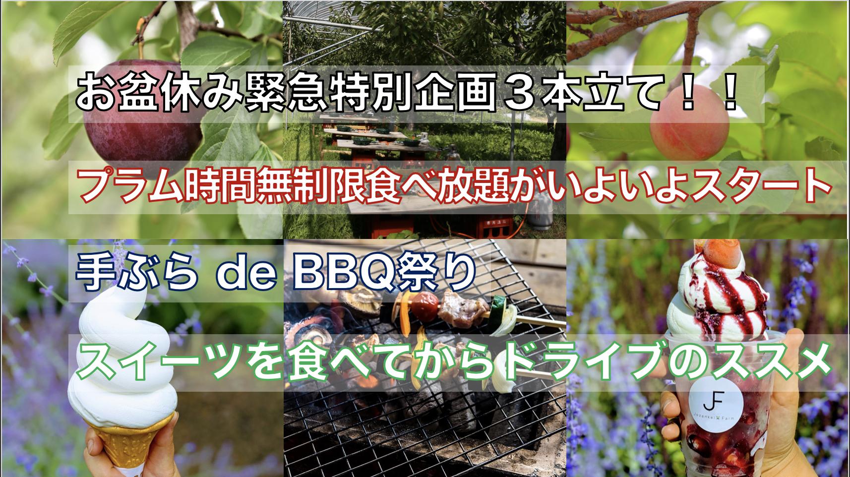 お盆休み緊急特別企画3本立て!!2019夏感謝フェア