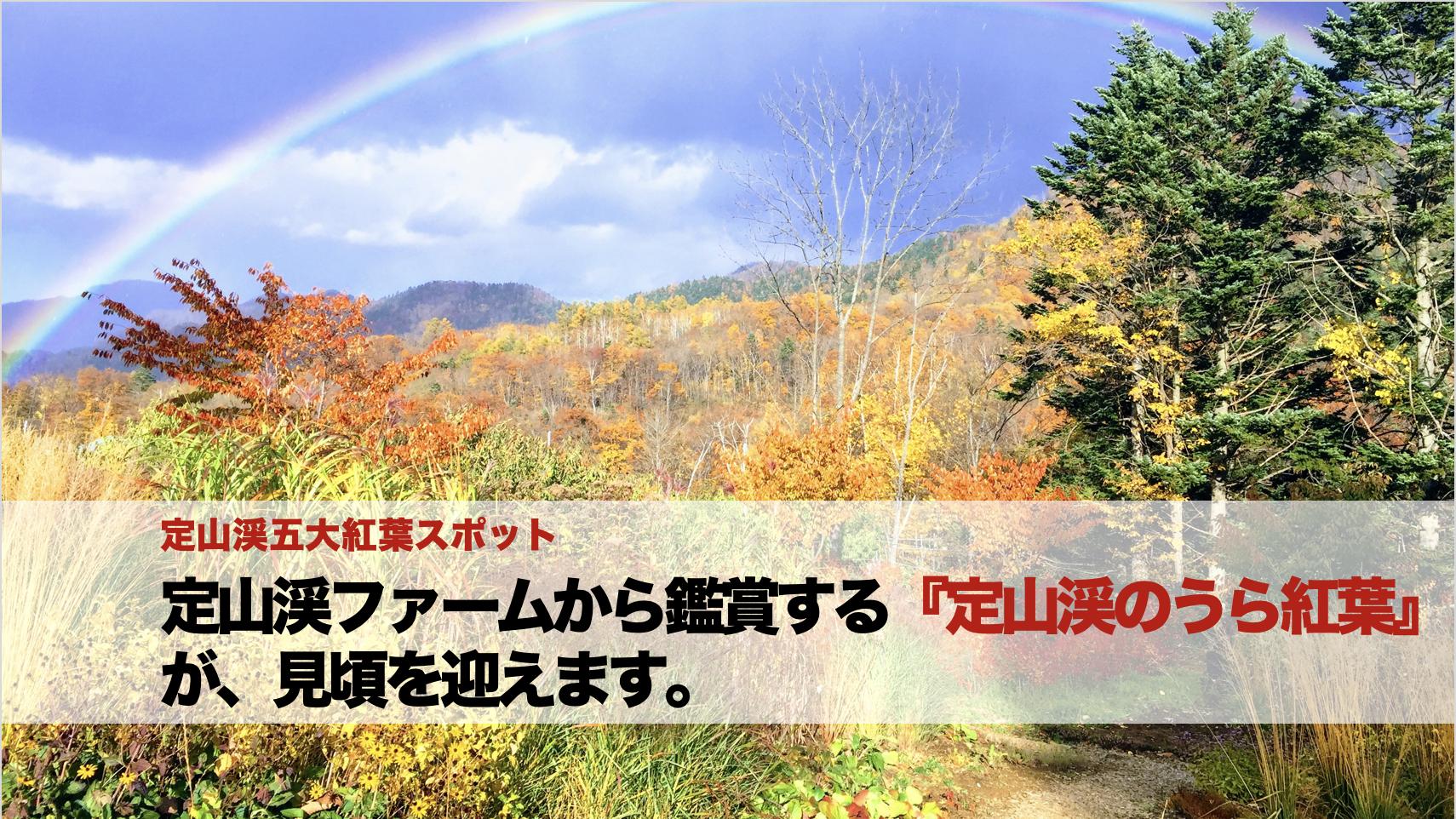 定山渓5大紅葉指定スポット定山渓ファームの『うら紅葉』がもうすぐ!(無料巡回送迎あります!)