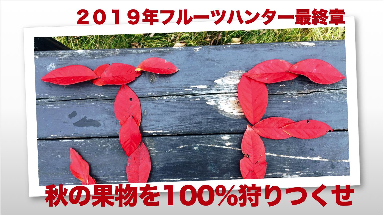 フルーツハンターたちよ秋の果実を100%狩りつくせ!!